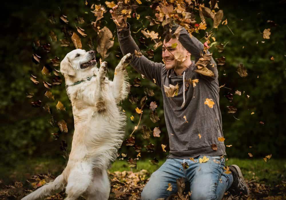 Foto für Dating Profil mit Hund